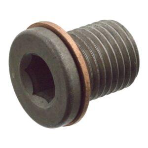 Oil Drain Plug (With Sealing Ring) 104310 by Febi Bilstein
