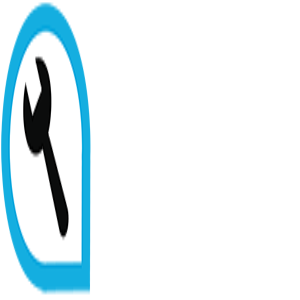 Alternator Clutch Freewheel 29904 by Febi Bilstein